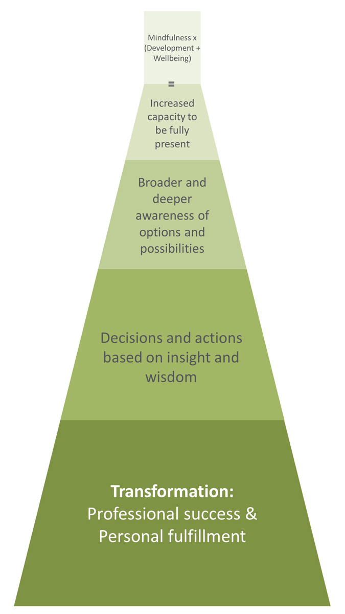 The mindfulness multiplier diagram